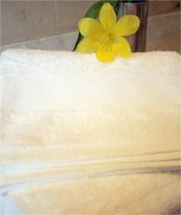 Glodina towels HAND TOWEL set of 2 - 50X90cm - 550gr/m2